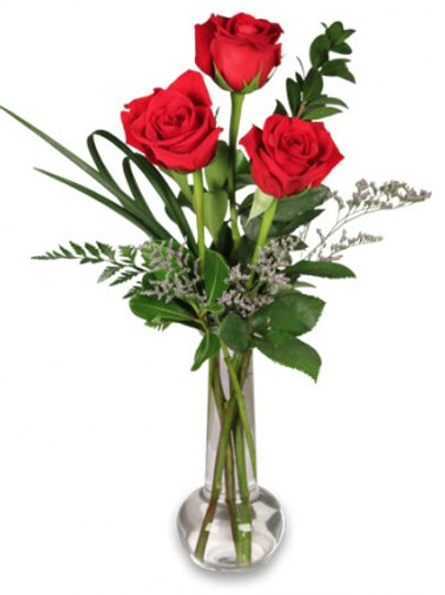 Three Roses With Vase