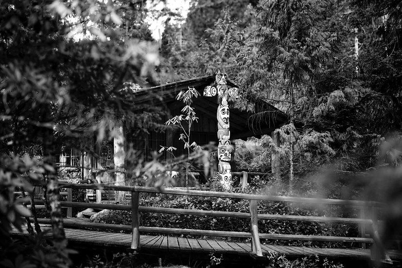 Sequoia I