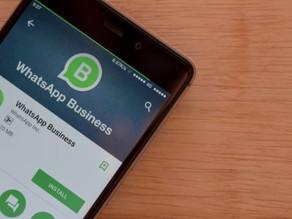 Como divulgar o WhatsApp da sua empresa