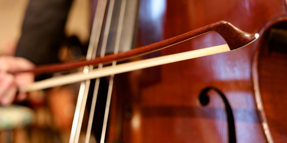 2019 Open Auditions - Strings