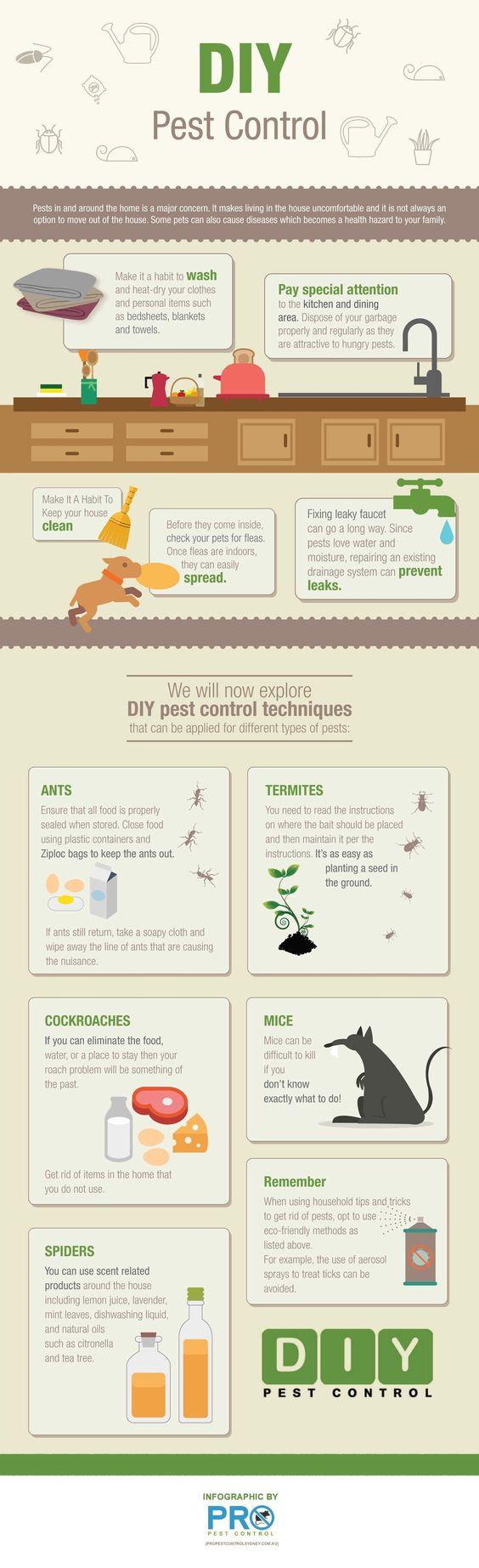 pest control infographic.jpg