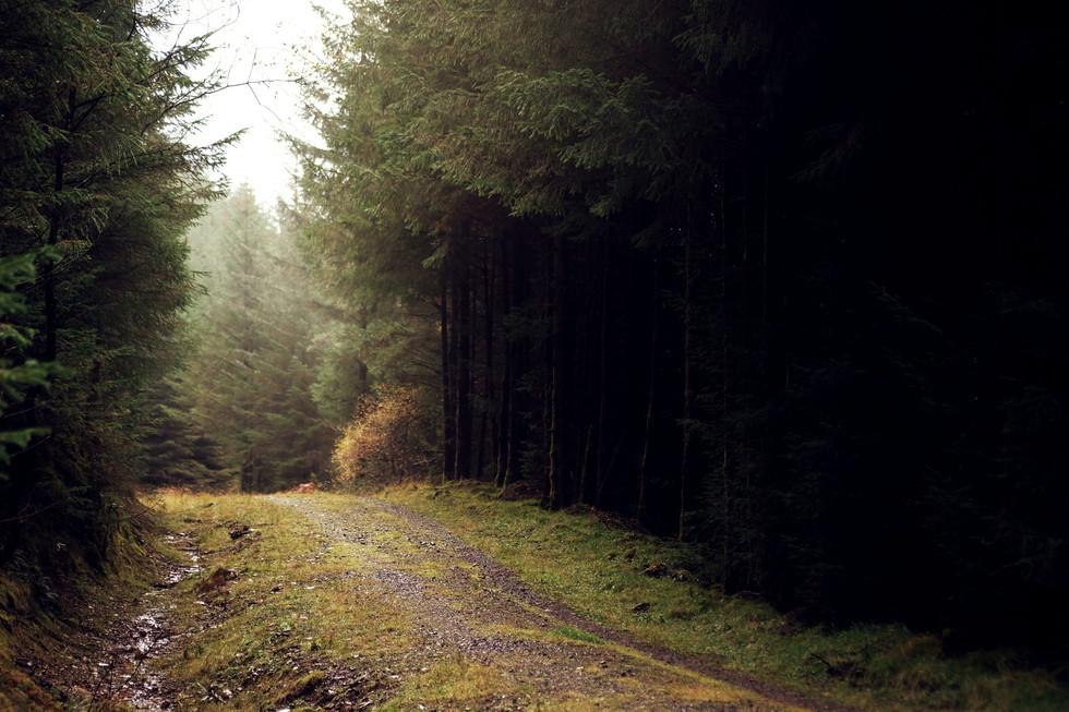 Autumn in Scotland - photography Charlotte Smith