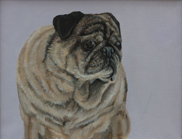 Pet Portrait - Chesty.jpg
