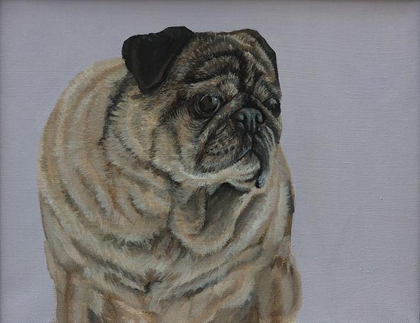 Pet Portrait - Chesty.jpg