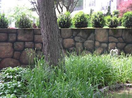 wall_after-446x330.jpg