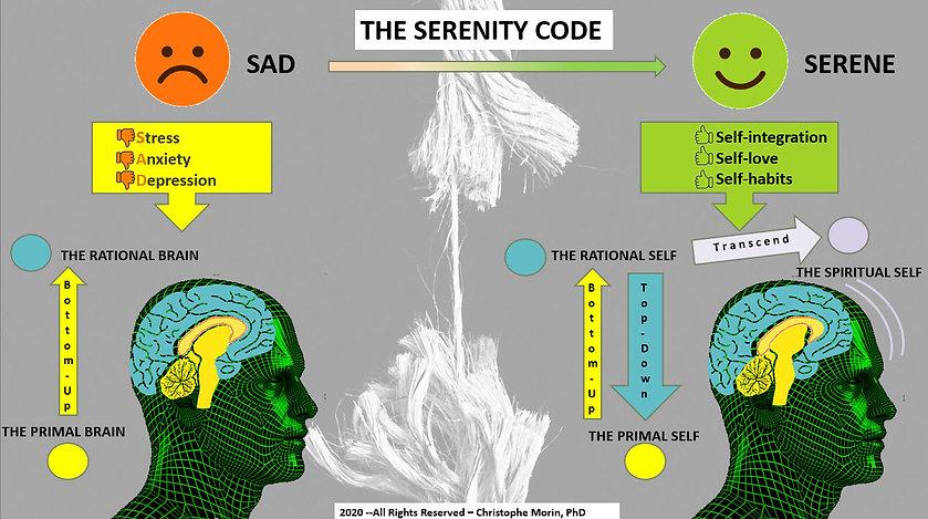 SC Code Side 1 pic.jpg