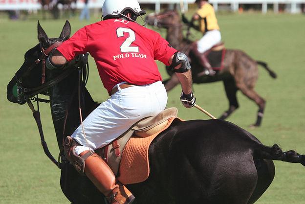 Polo-Spieler auf dem Pferd