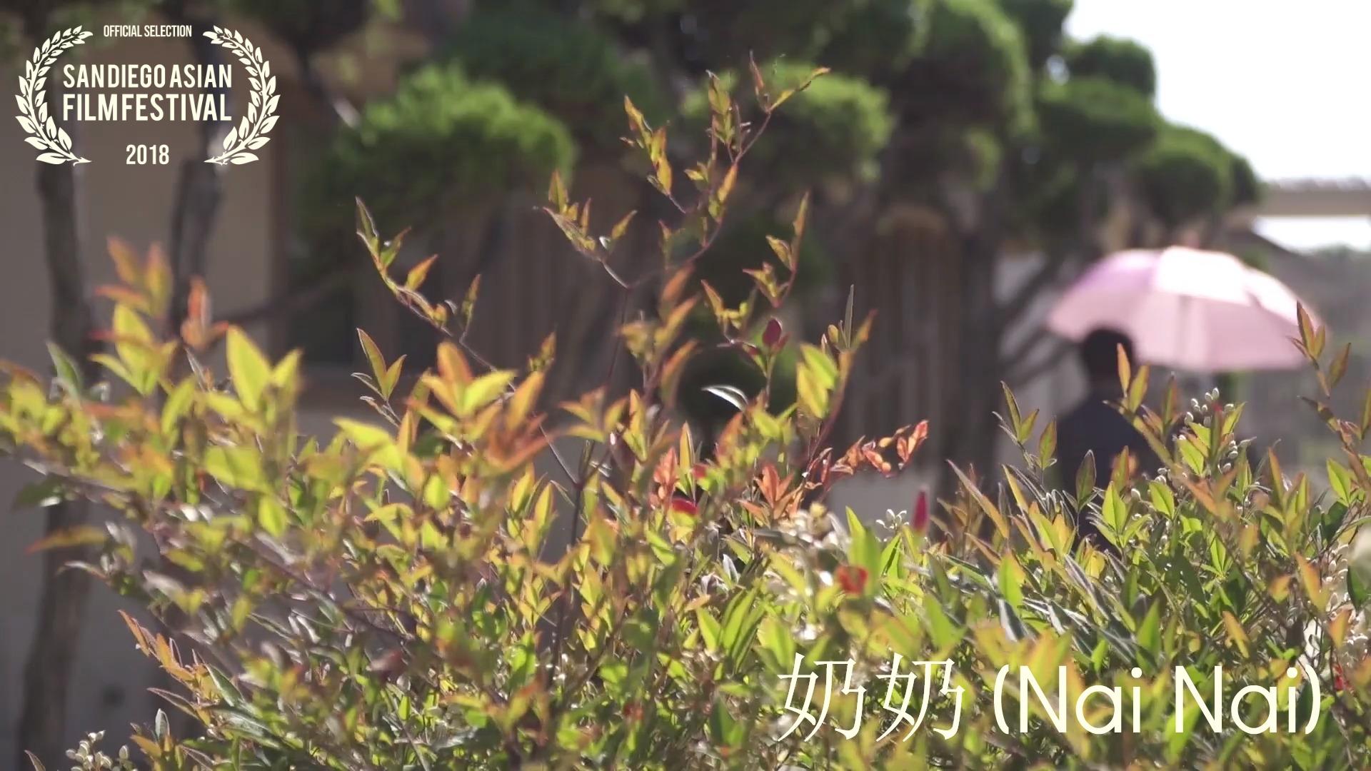 nai nai walking image
