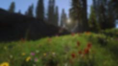 Grass_03.png