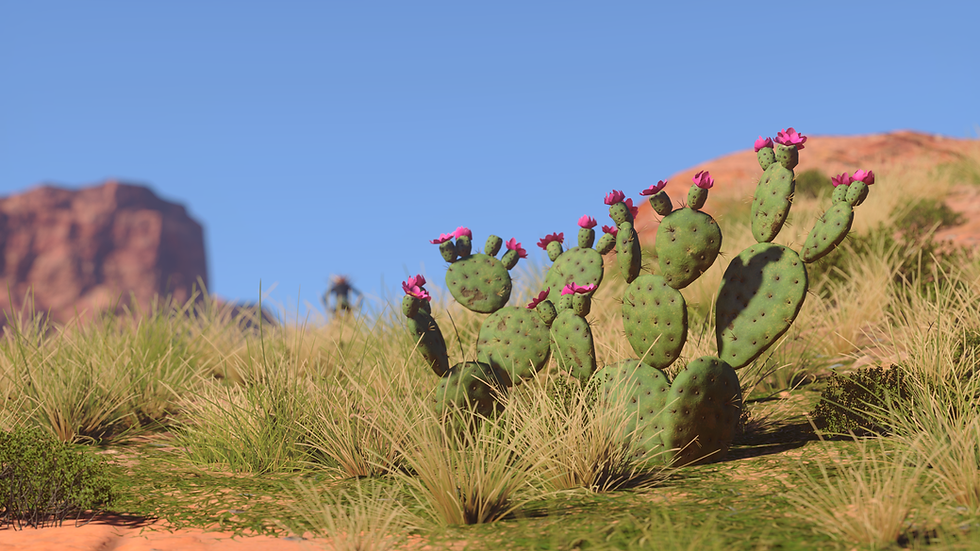PricklyPear_04.png