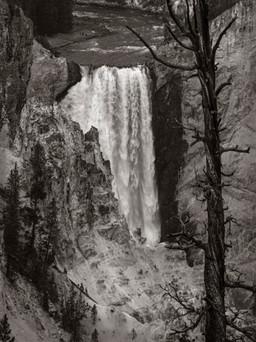 Yellowstone Falls (2)