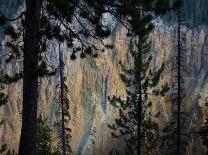 Yellowsone Canyon Wall