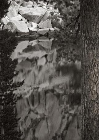 Sequoia Pond