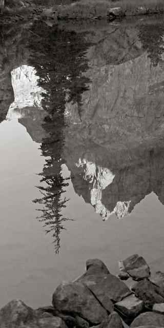 Ediza Reflection