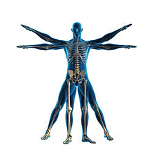 Book a Chiropractic appointment in Wyton, Huntingdon
