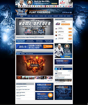 Dominic Hennig Hockey Website Designs