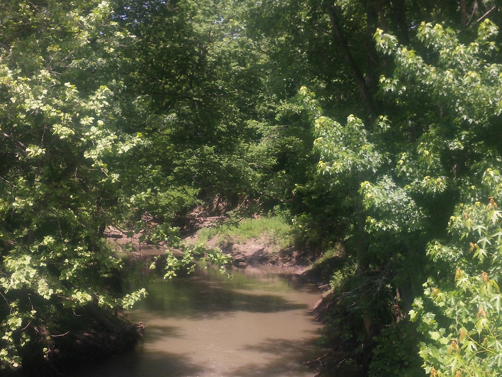 View of Sni-a-Bar Creek from bridge on RD Mize Road