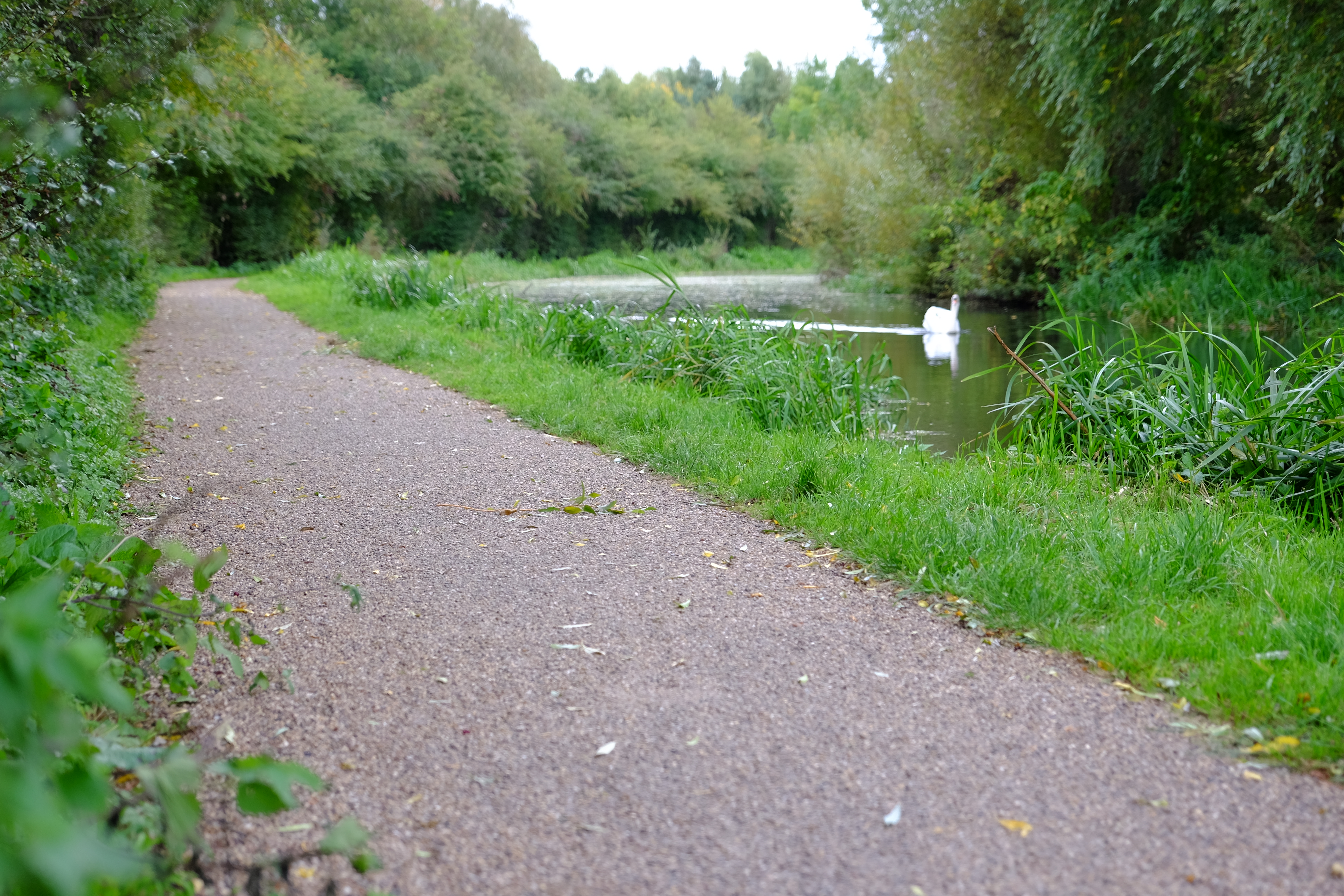 Cotgrave Canal