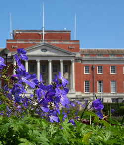 Chesterfield in Bloom