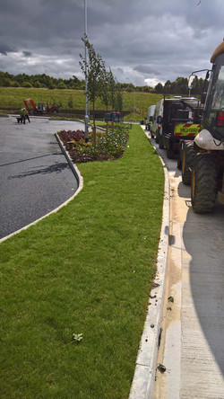 Planting and Turf at Markham Vale