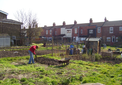 Lincoln Allotments