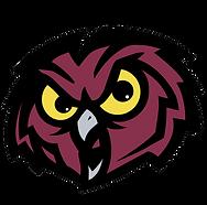 Temple Owl copy.png