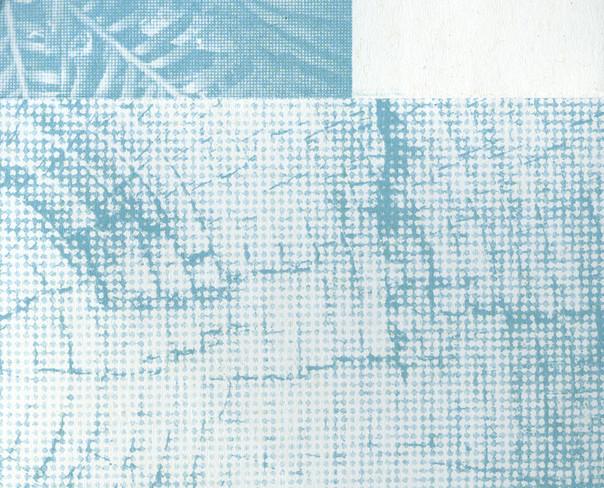 foret001-2.jpg