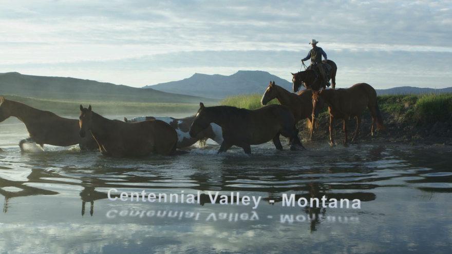 Centennial Valley_SR.jpeg