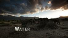 WATER BACKPLATE_fadevrsn.jpeg