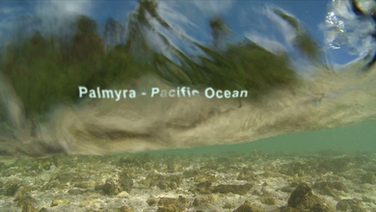 Melanesia_SR-1.jpeg