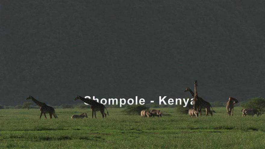 Shompole, Kenya_SR.jpeg