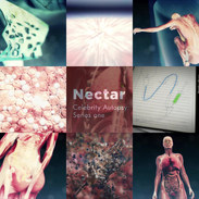 _Nectar9_Celeb Autospy.mp4