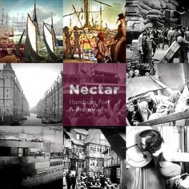 _Nectar9_HH.mp4