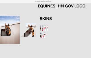 equines_skins.JPG