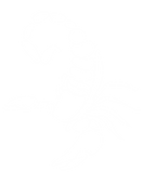scorpion outline-01.png