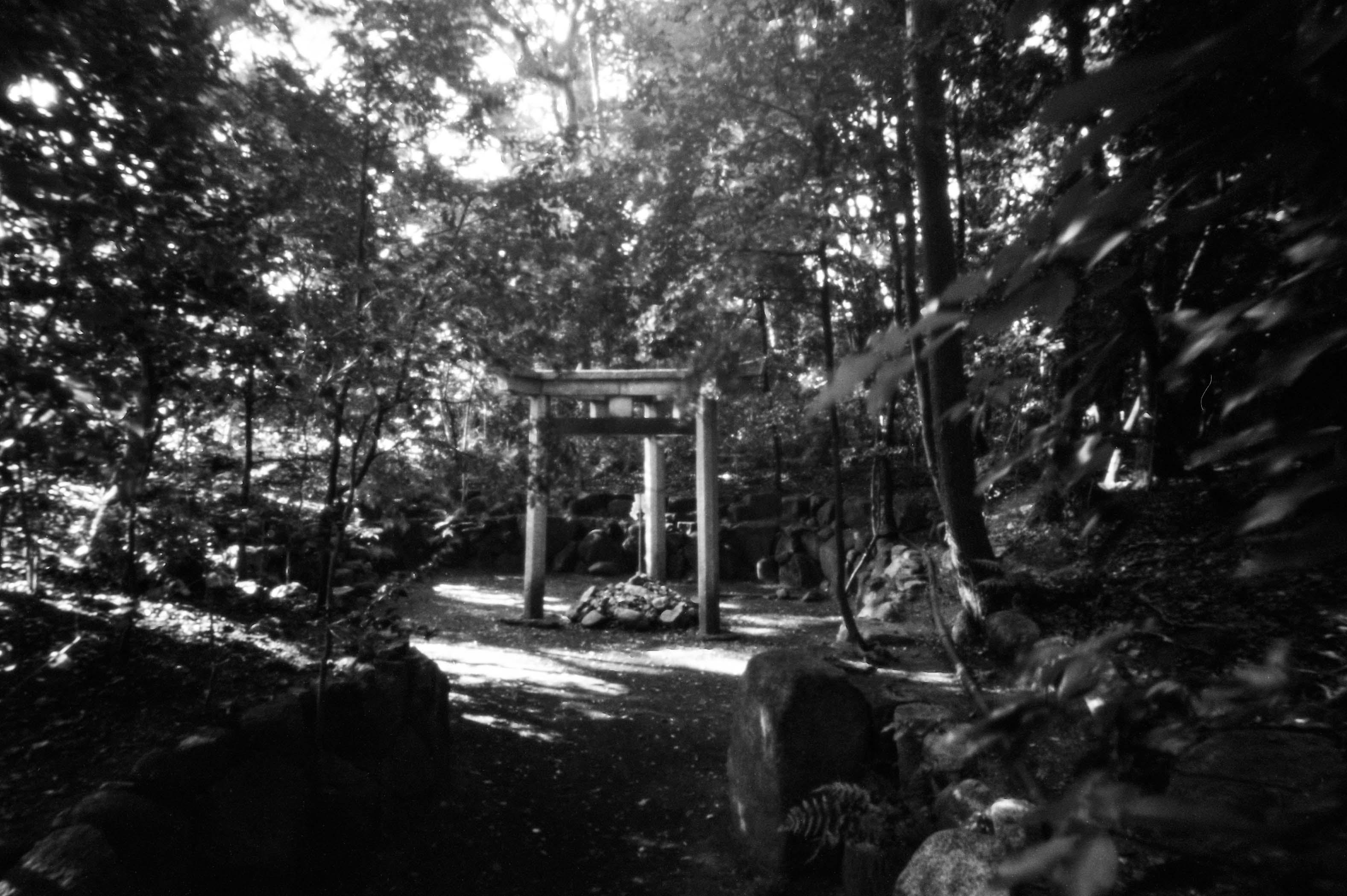 Nishihonganji-54