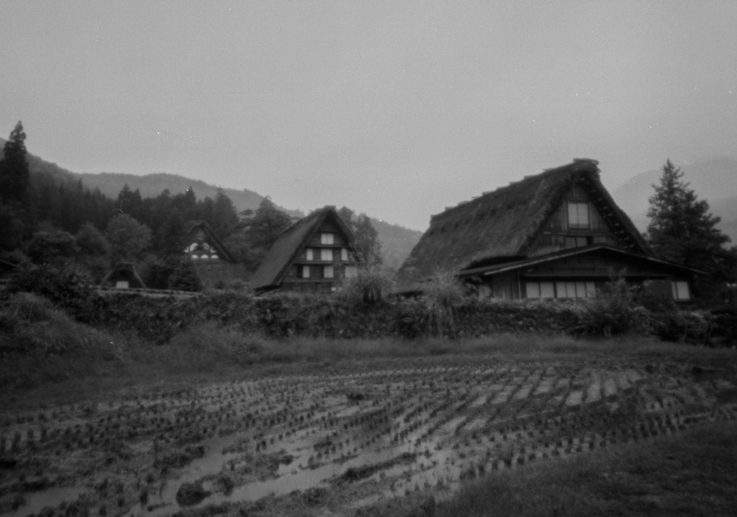 Nishihonganji-71