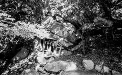 多賀大社の奥宮、胡宮神社