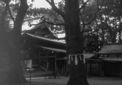 大宮八幡宮(東京都杉並区)