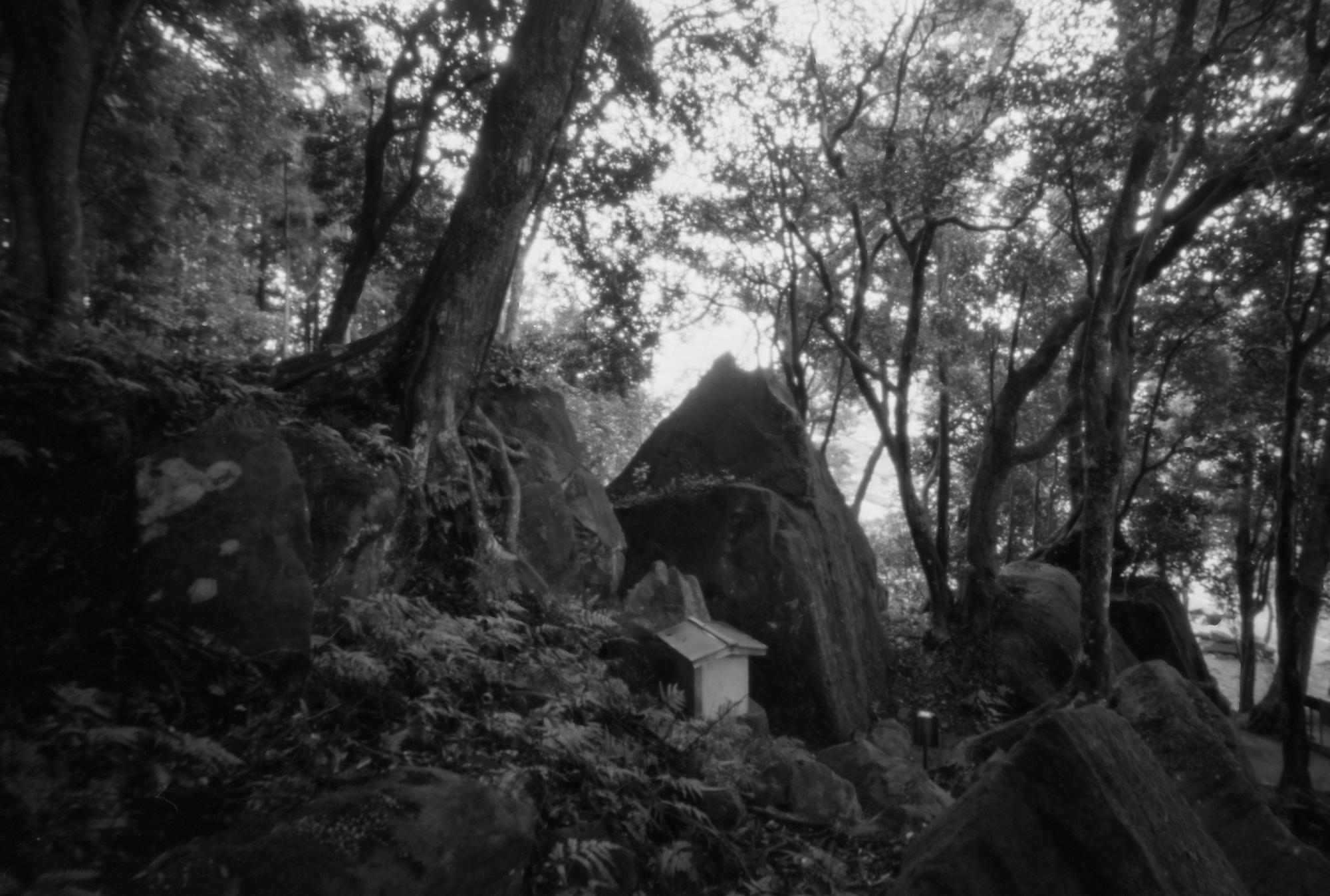 神谷神社-5