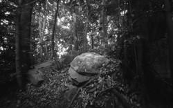 Ononoimoko  tomb