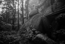 名草厳島神社 5