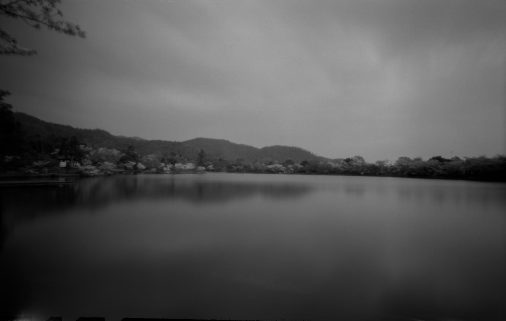 嵯峨野、大覚寺 大沢池。平安時代前期の名残をとどめ、日本最古の庭池とされている。