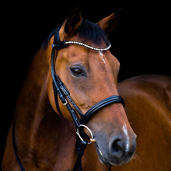 Stubben Freedom Bridle with Magic Tack
