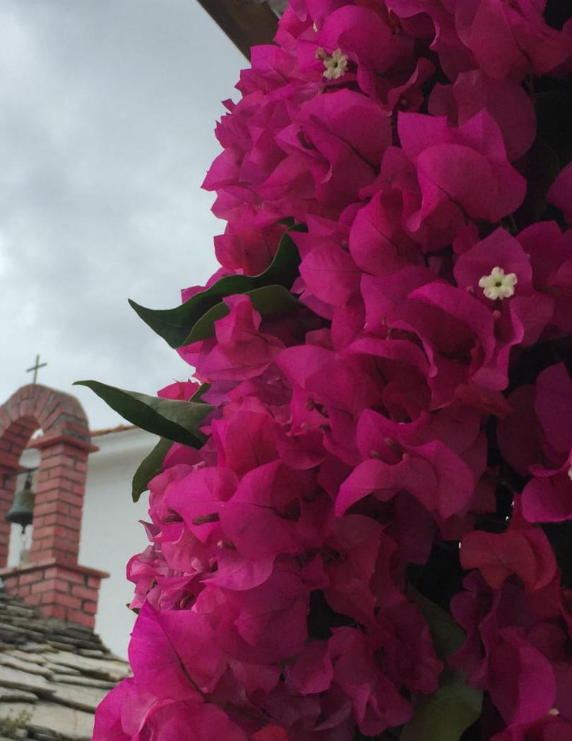 Skopelos churches