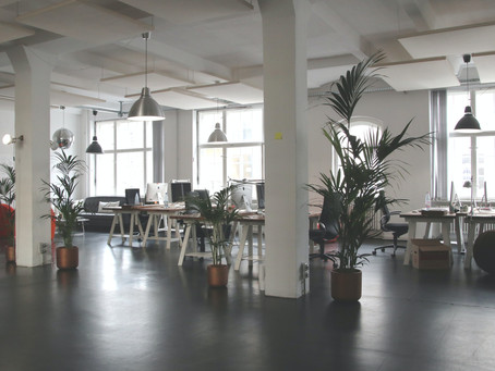 10 Ways to Be More Sustainable at Your Office / Workplace