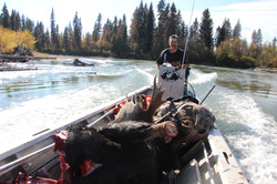 Moose hunt from river boats