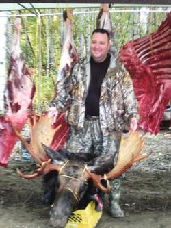 meat moose