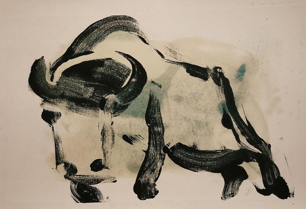 bison_5.jpg