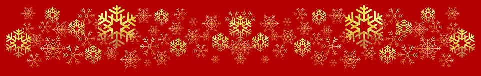 Ornament Snezinke 2.jpg